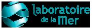 logo_ldlm